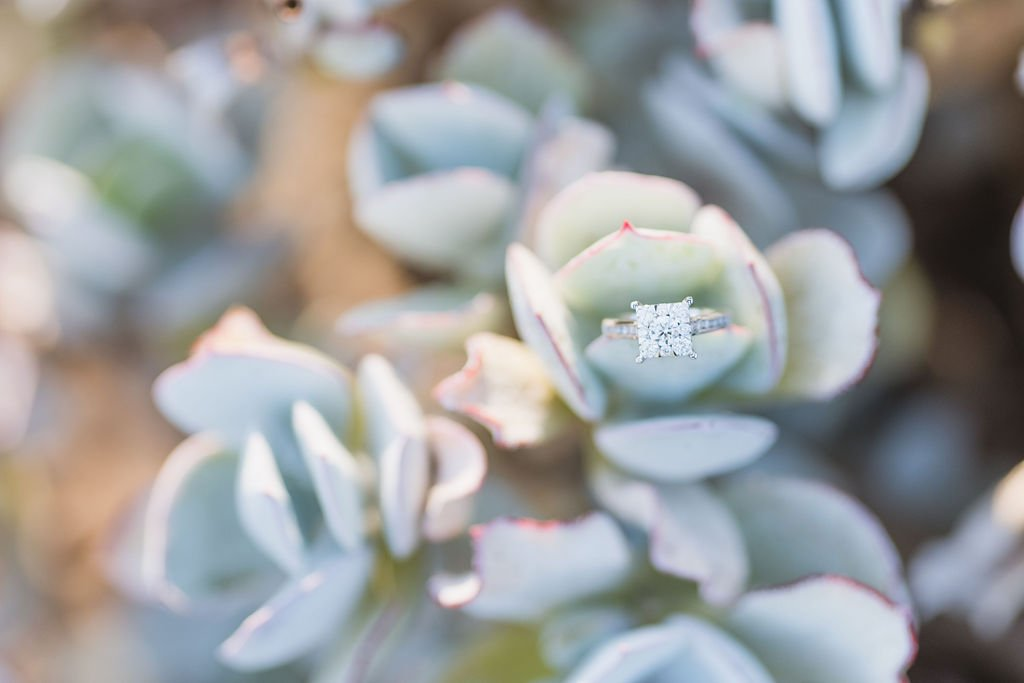 diamond wedding ring amongst succulent